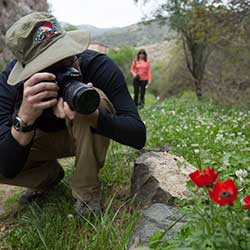 A photographer snaps a photo of a flower.