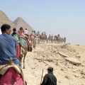 Horse tour of Pyramids, Cairo