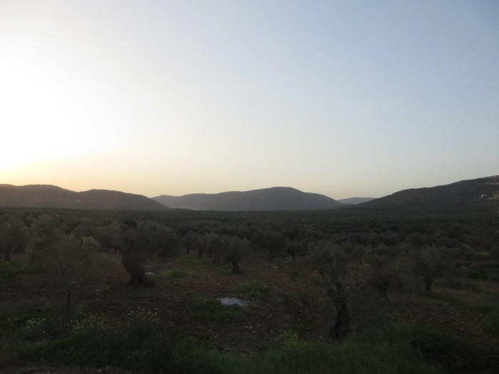 The View from the Kibbutz