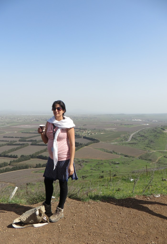 Our tour guide, Hadas, explaining the importance of the Golan Heights
